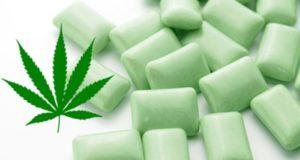 chewin gum al cbd, ideale per i dolori della fibriomalgia
